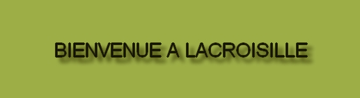 Site officiel de la commune de Lacroisille
